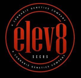 Elev8 Seeds