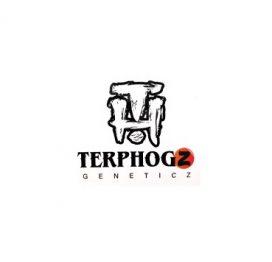Platinum Seeds/Terp Hogz